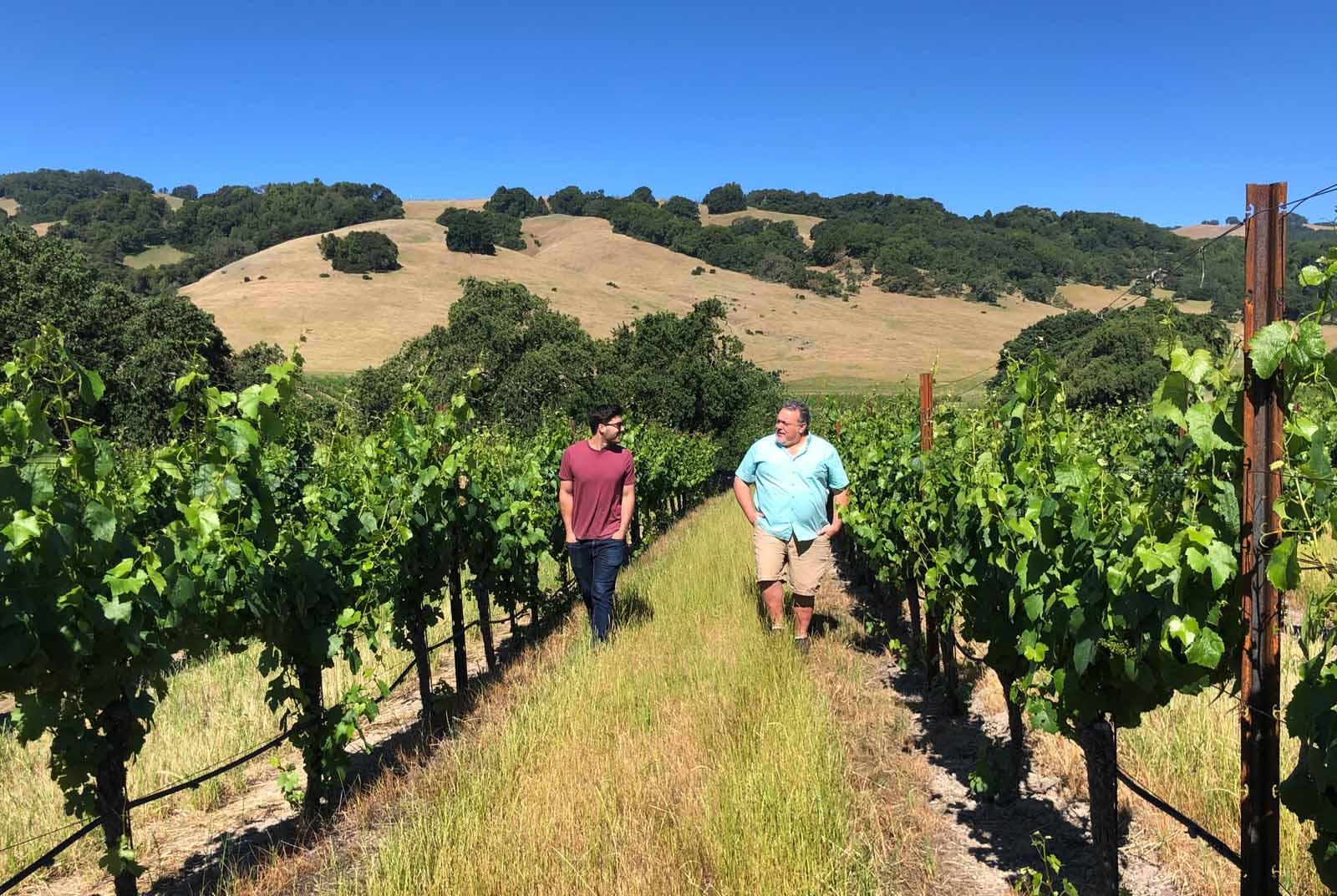 Tim Milos walking Napa vineyard