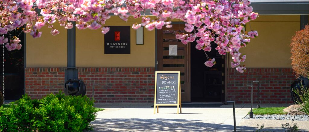 Cherry blossoms at RD Winery tasting room.