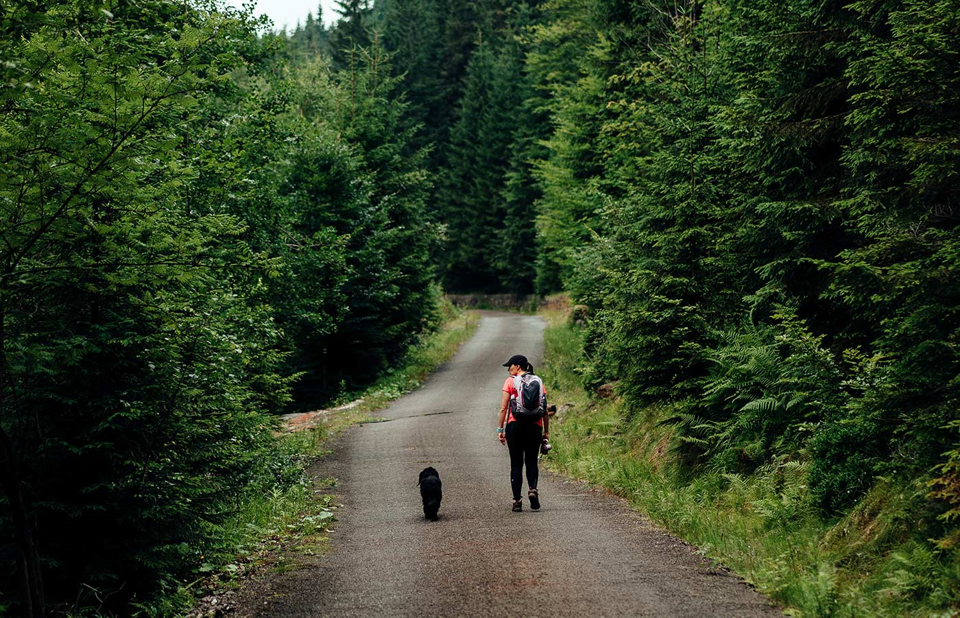 Woman and her dog on a hike in the forest.